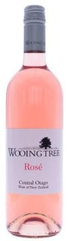 Wooing Tree Rose